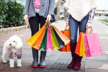 woman holding shopping bags with a dog