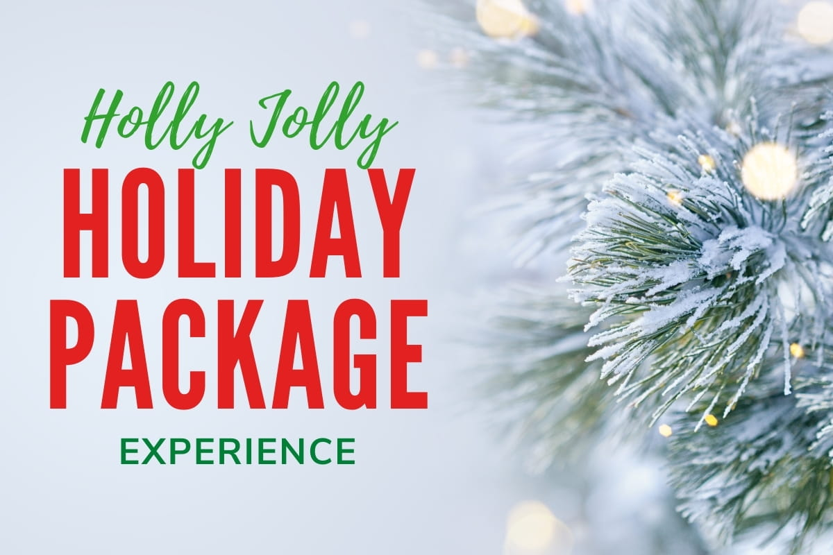 Close up of a pine tree branch with snow - Holly Jolly Holiday Package Experience