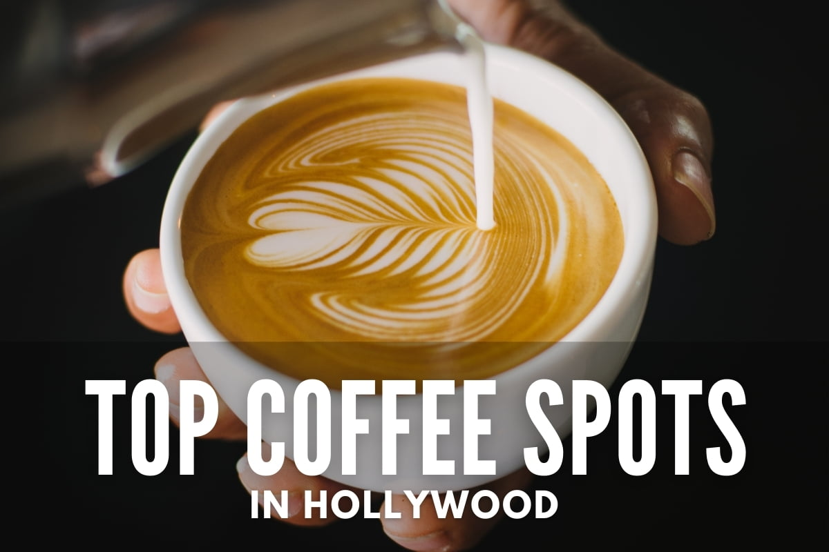 Top Coffee Spots in Hollywood
