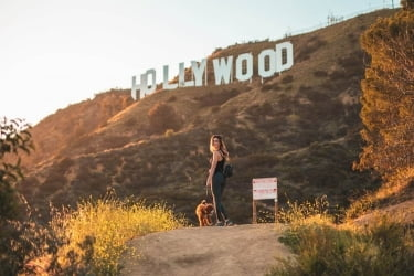 Woman with a dog and the Hollywood Sign in the back