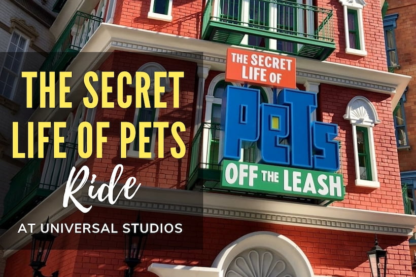 Secret Life of Pets Ride