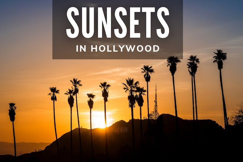 Sunsets in Hollywood - Sunset and palms