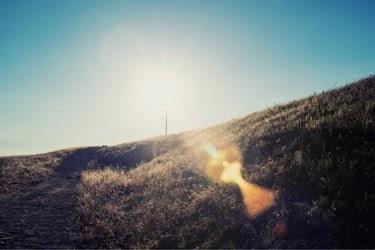 Ascot Hills