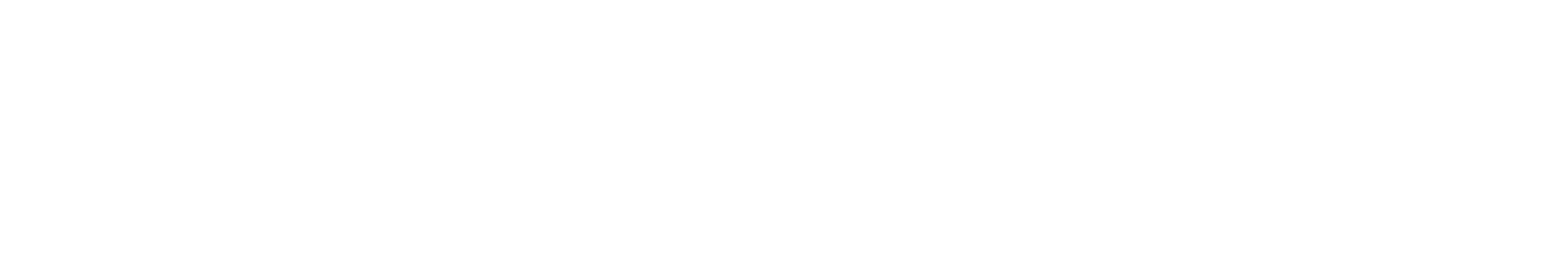 Ecaresoft white logo