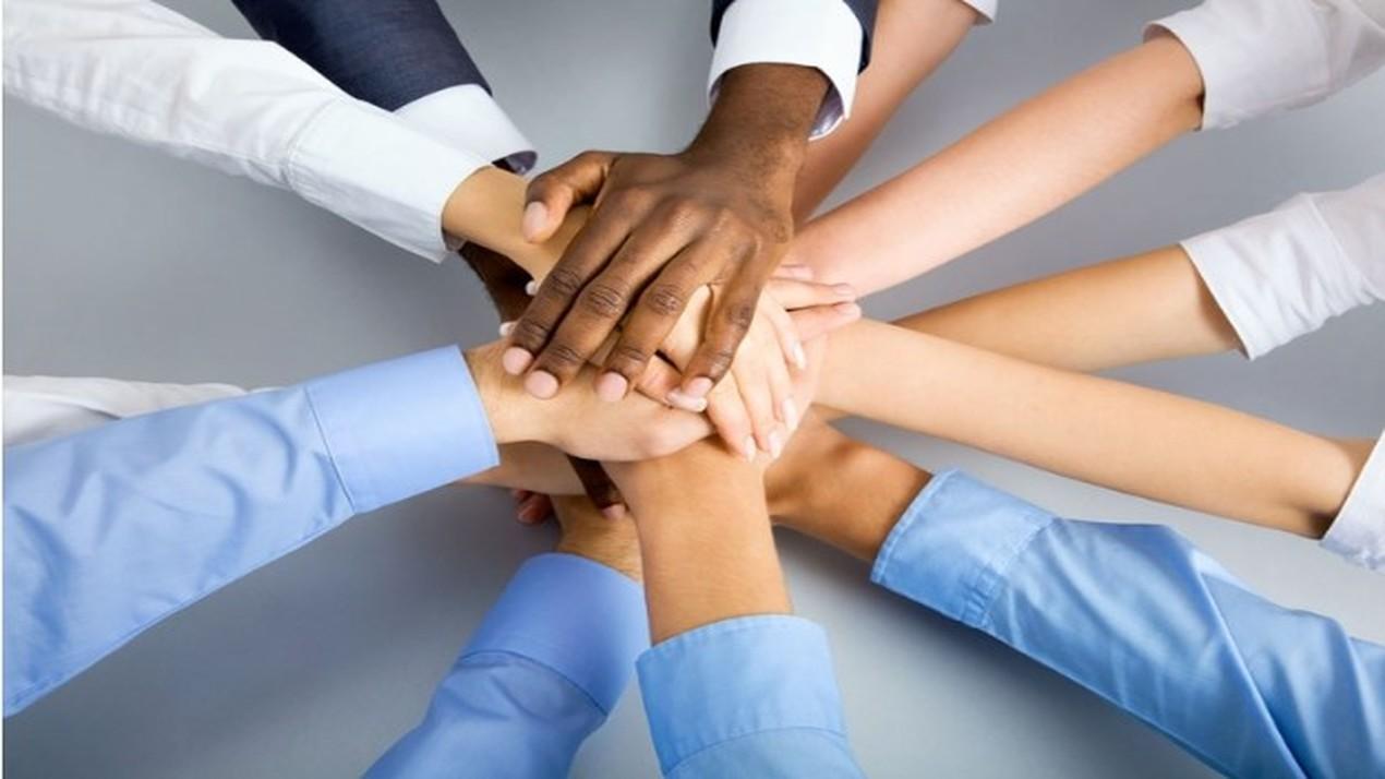 Seis Características para Formar un Equipo Imparable