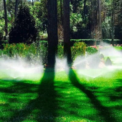 Grass Sprinkler Company The Woodlands Texas