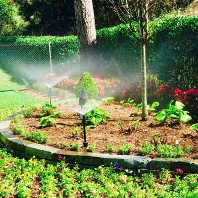 Plants in the Garden Sprinkler Company The Woodlands Texas
