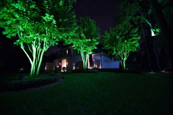 Trees Landscape Lighting Company Woodforest Texas