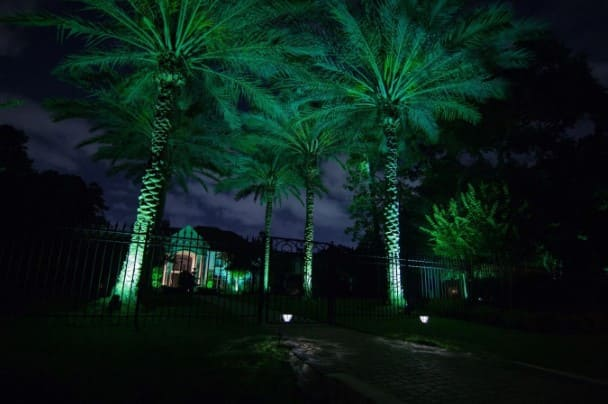 Palms Landscape Lighting Company The Woodlands Texas