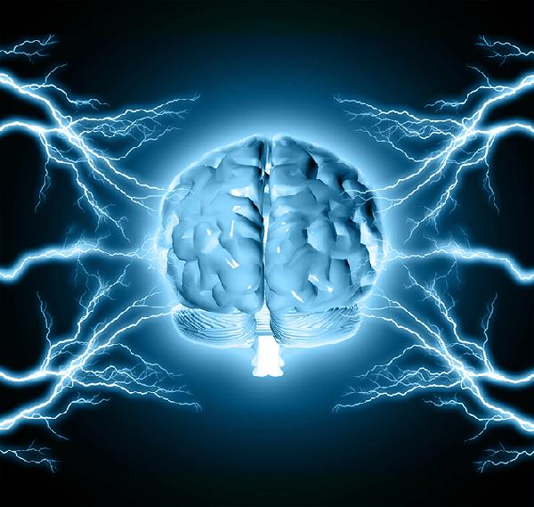 Cognitive Behavior & Neuroscience