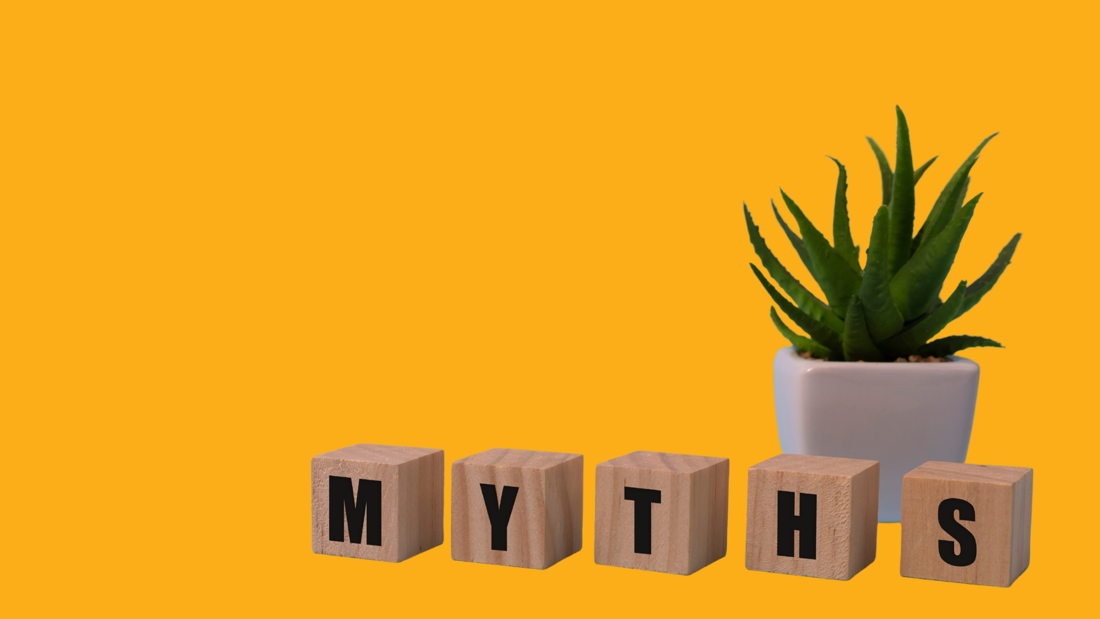 """To help set the record straight, here are the top four myths about programmatic marketing — and the truth behind them. """