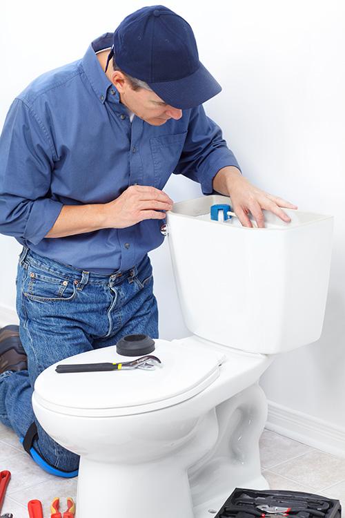 Plumber fixing toilet