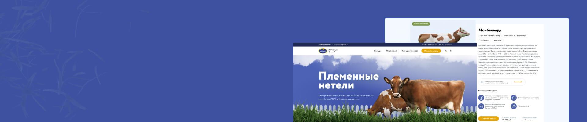 neteli.molvest.ru