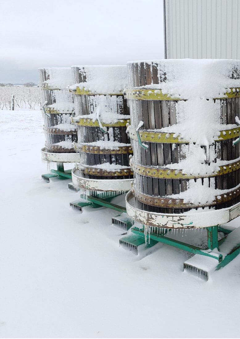 Icewine barrels