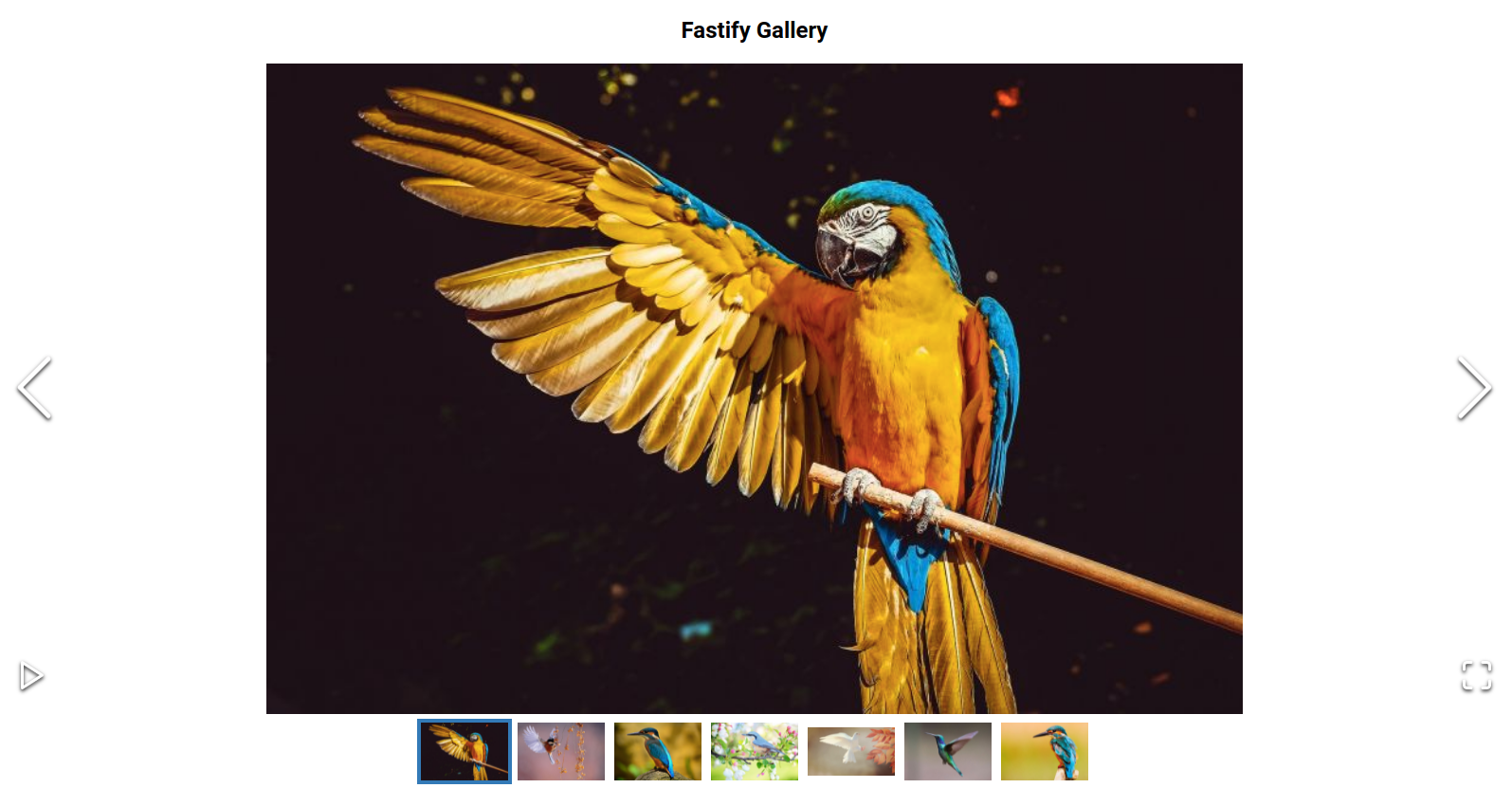fastify gallery