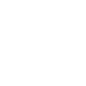 Instagram  white logo, link to platform