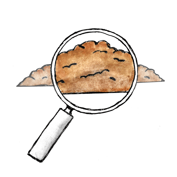 Illustration of a soil sample magnified for testing and yield analysis.