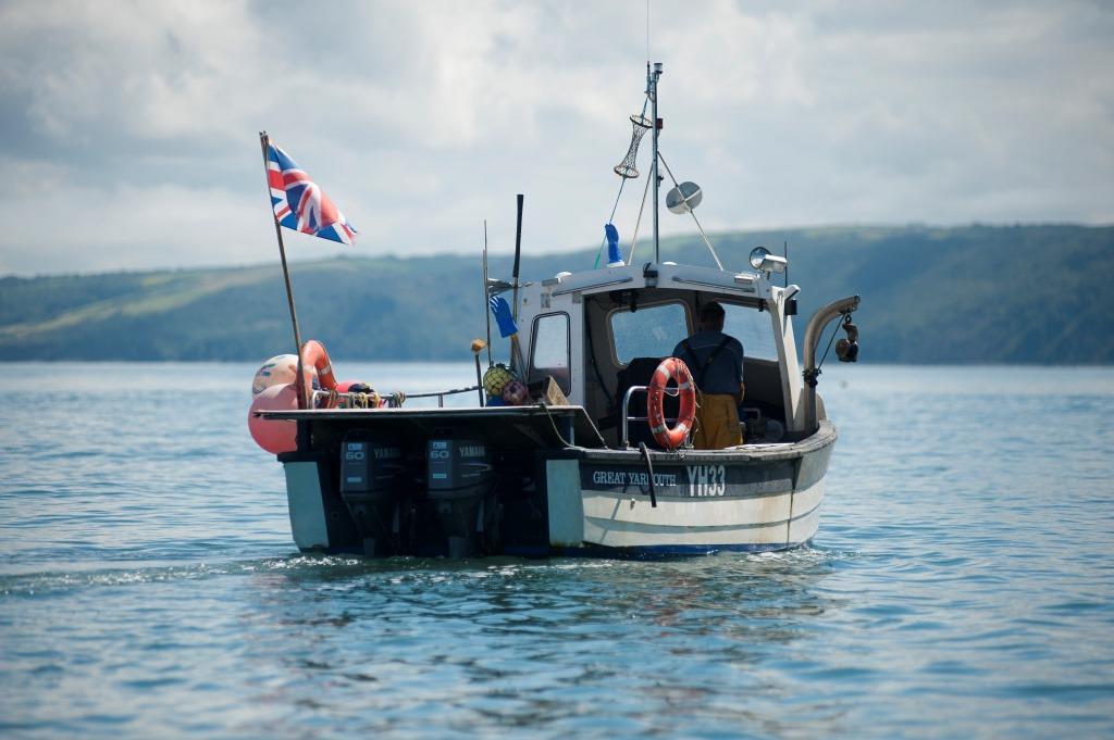 Sustainable Fishmongers