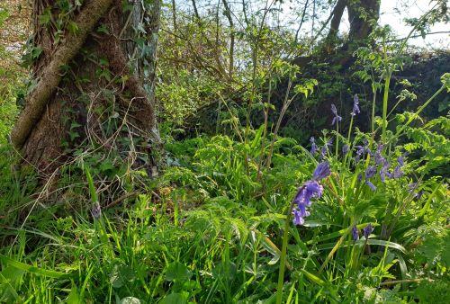 Spring has sprung! April review