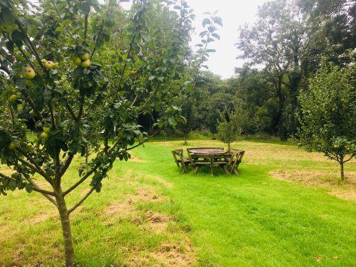 Weare Giffard Community Orchard