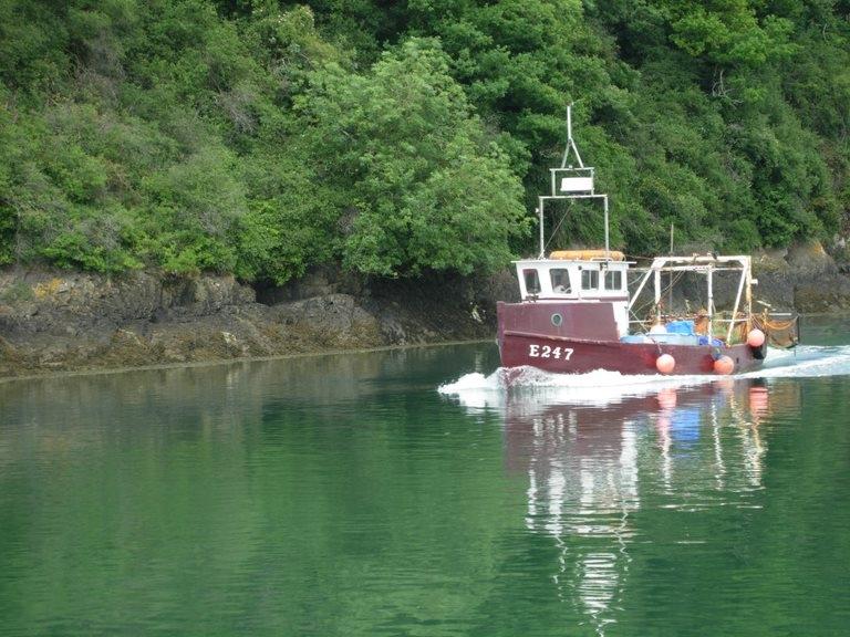 Seeking local fishing knowledge