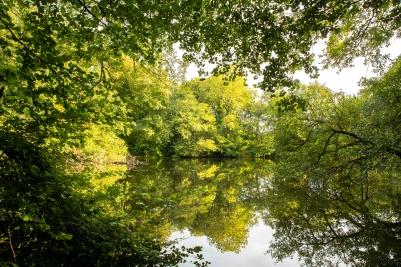 Birchwood North Devon