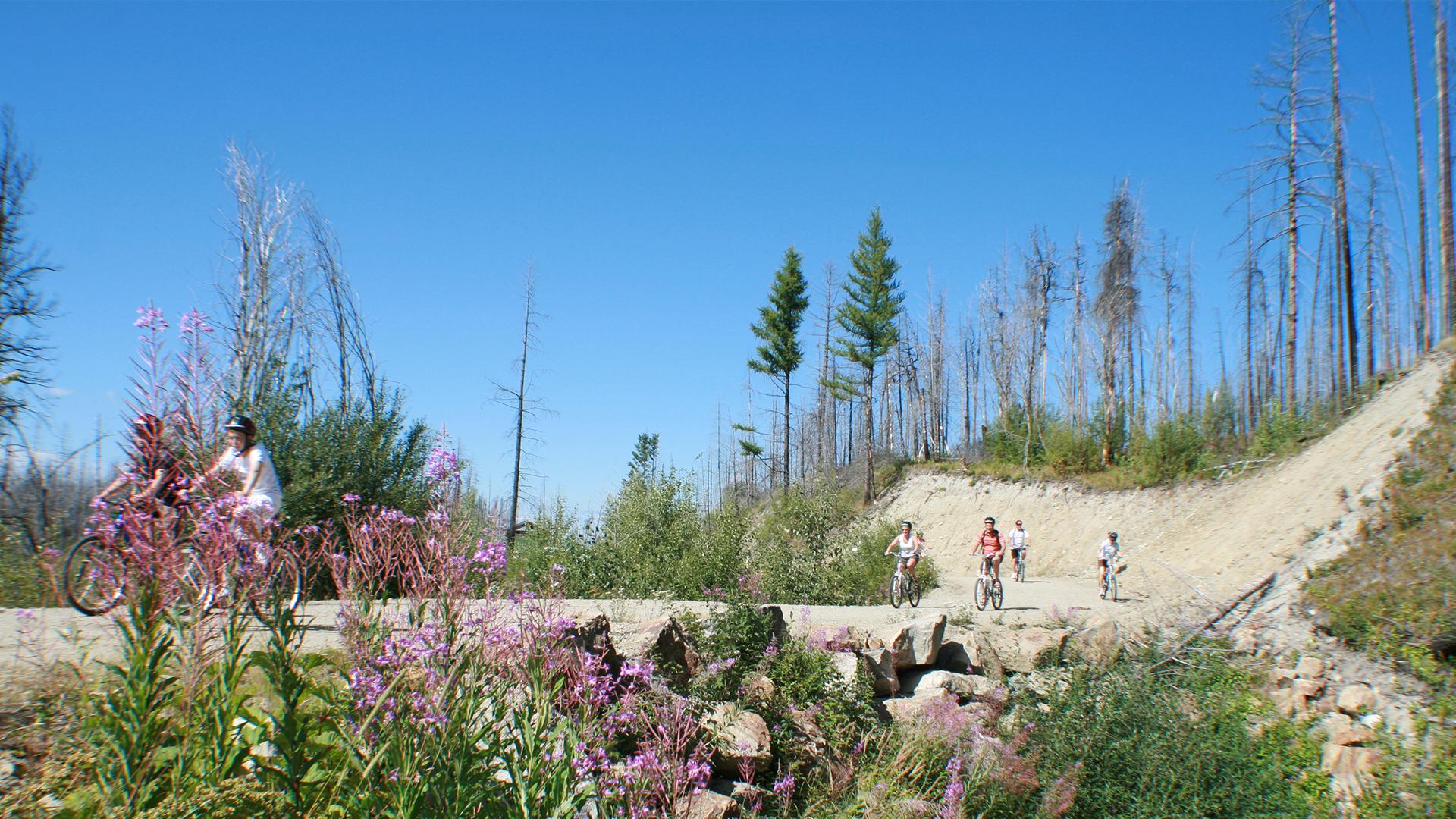 Kettle Valley Railroad Bike Rentals & Tours