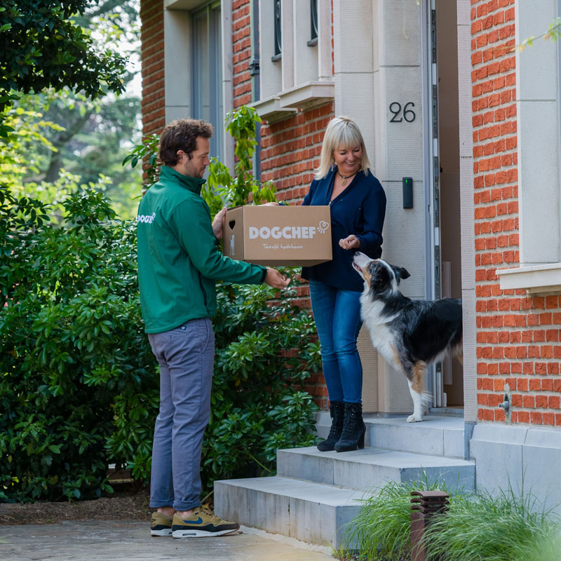 Livraison box Dog Chef, propriétaire et chien