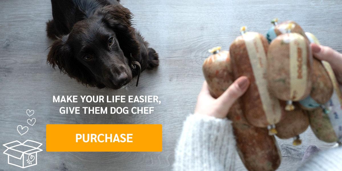 https://www.dogchef.com/en/start/
