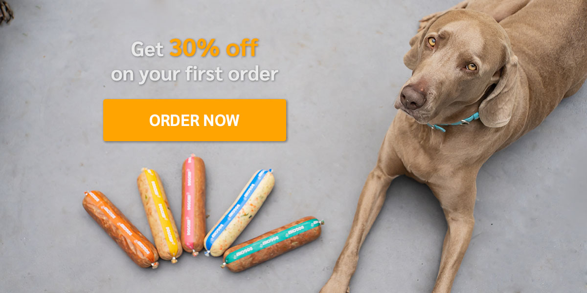 Get 30% off on your first order