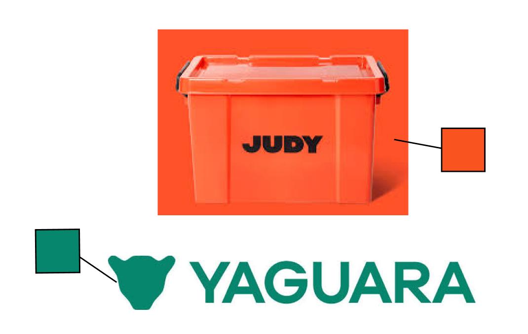 judy_yaguara