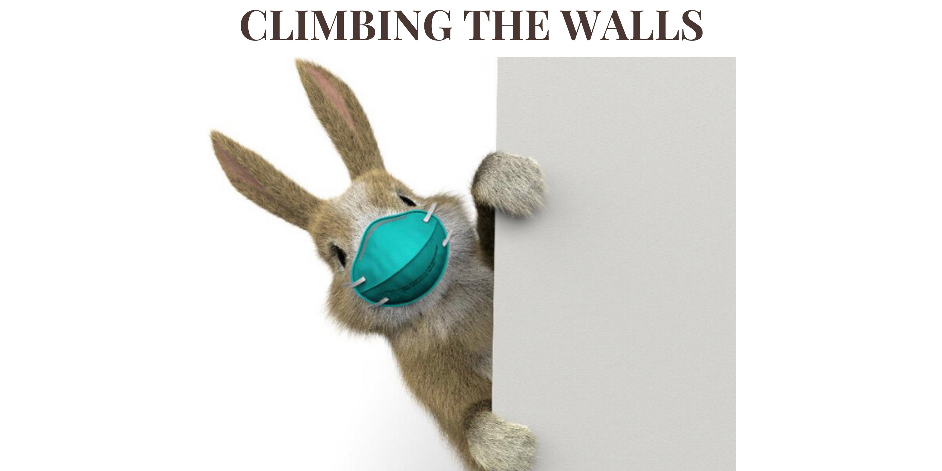 """Climbing the Walls and  """"19th Century Stereotypes vs. 19th Century Reality"""""""
