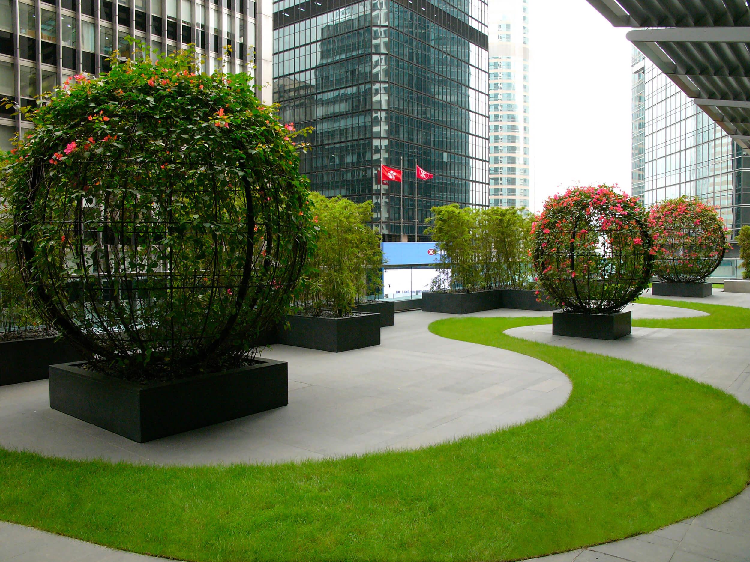 Hong Kong Roof Garden