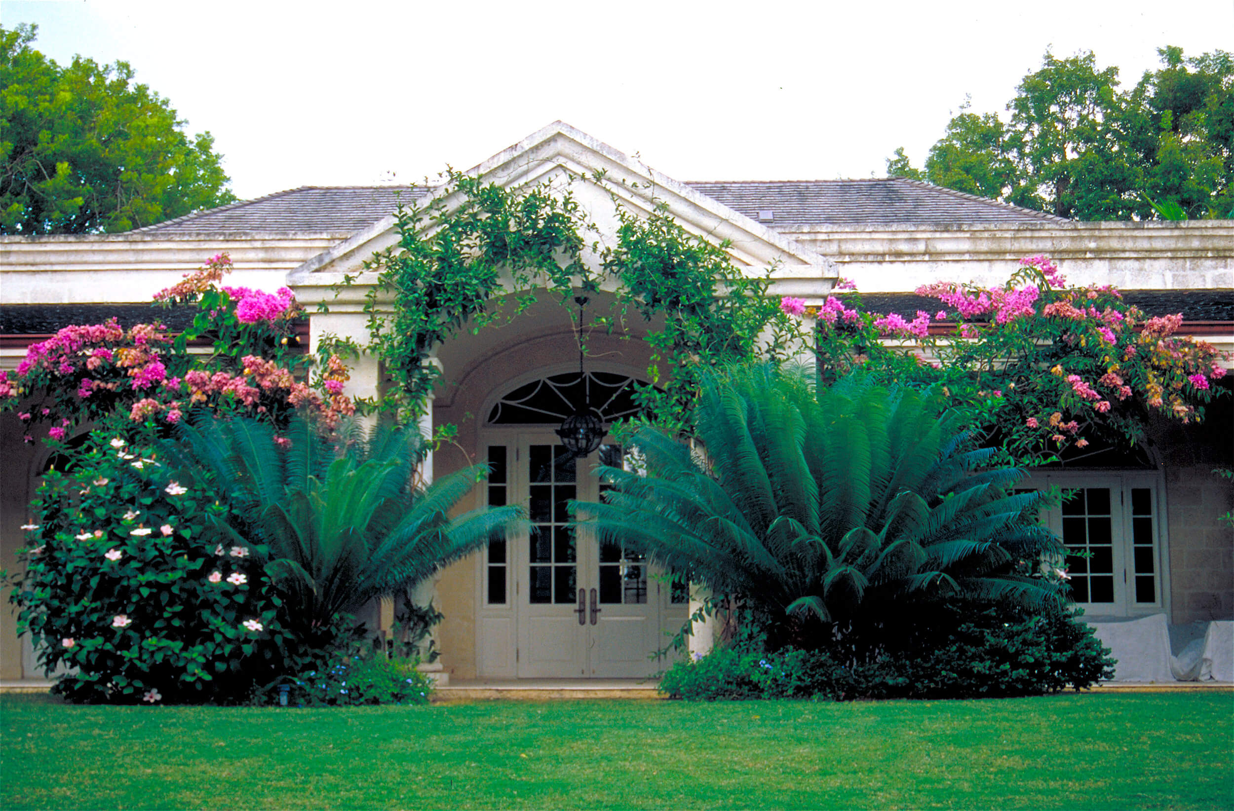 Garden in Barbados