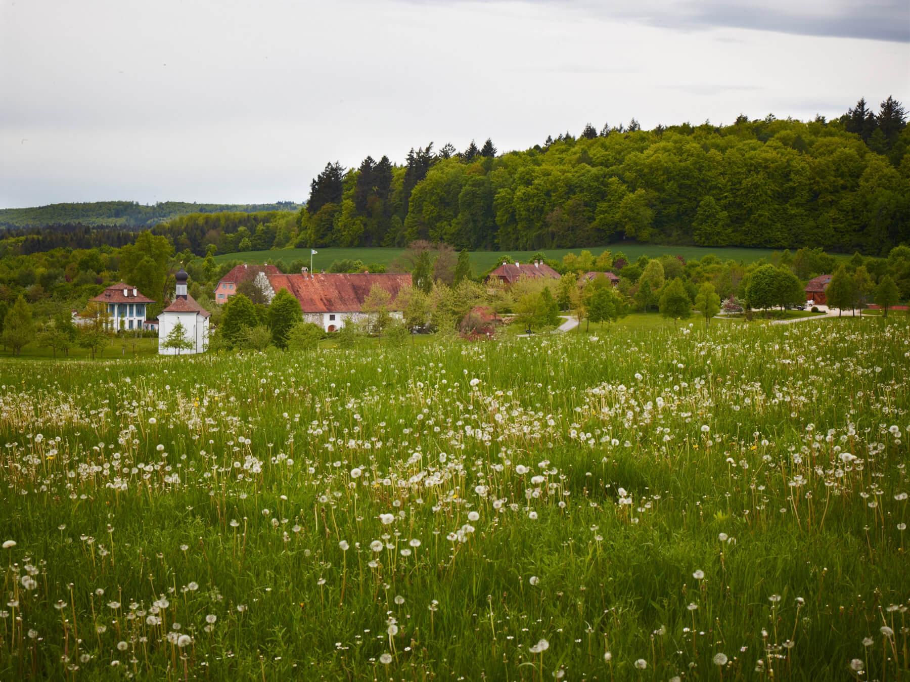 Garden in Eigeltingen, Germany