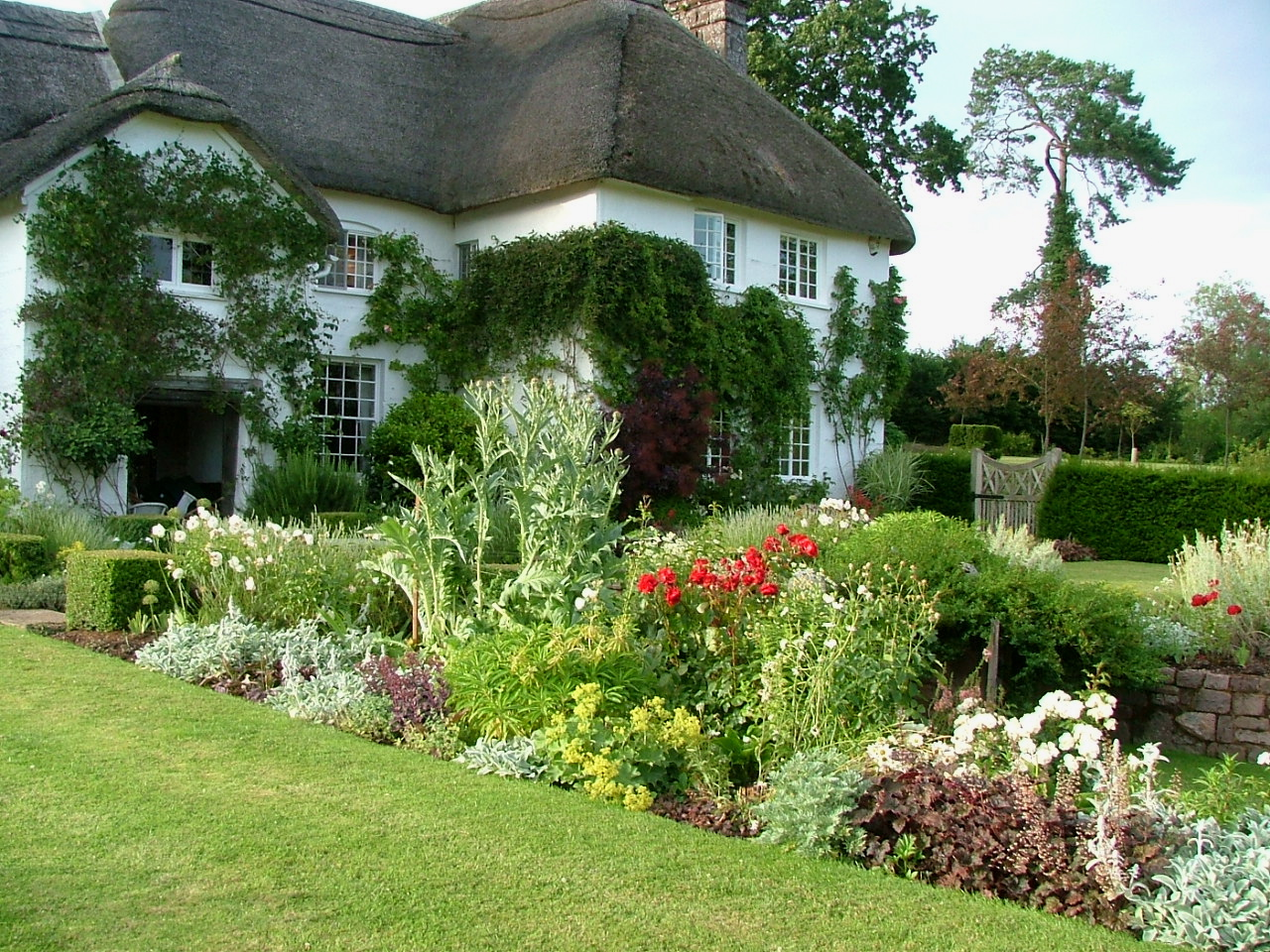 Garden in Devon