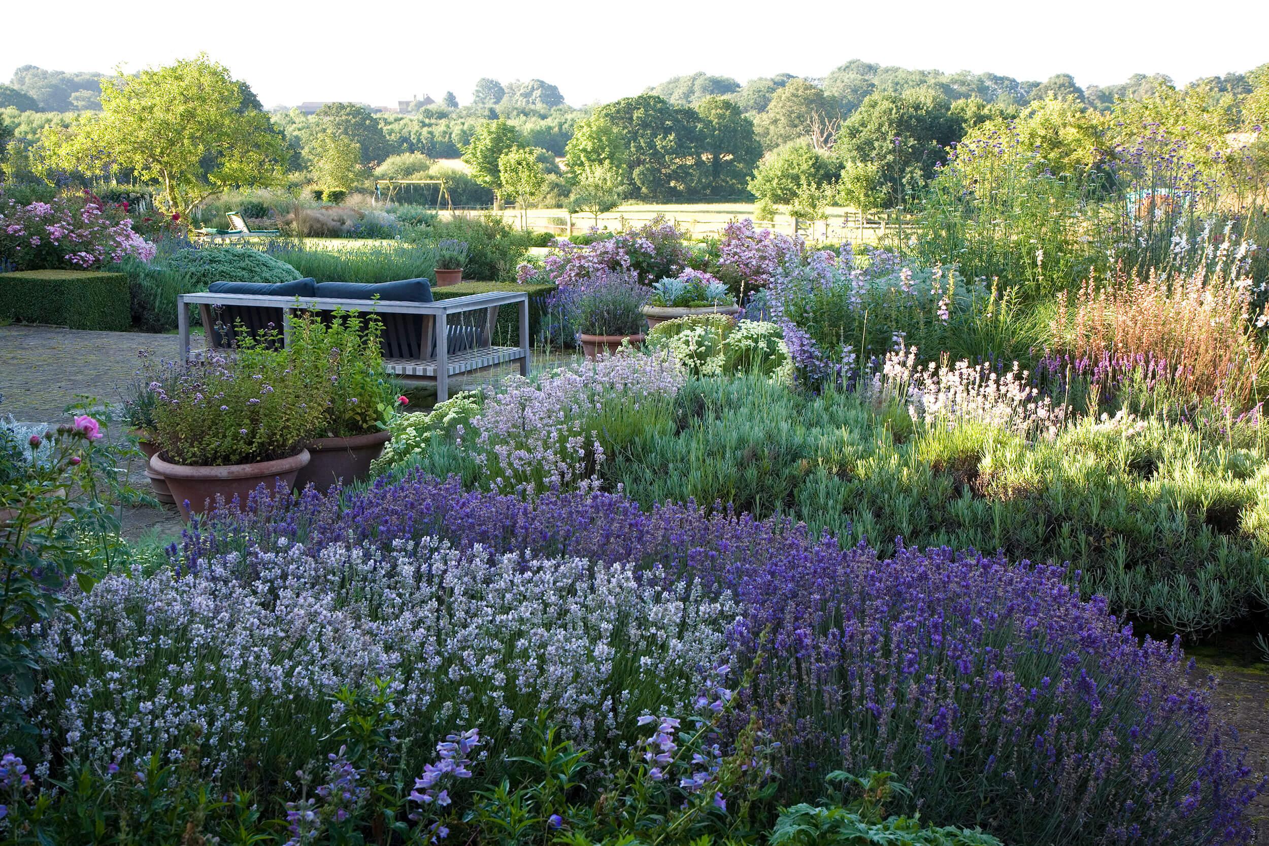 Garden in West Sussex