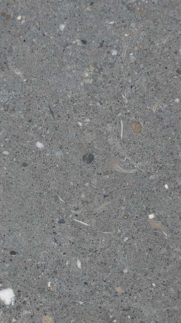 Gris Concrete