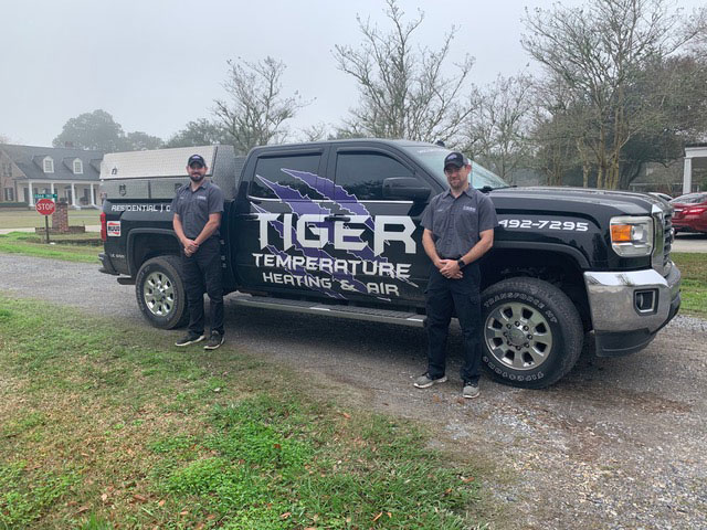 Tiger temperature team