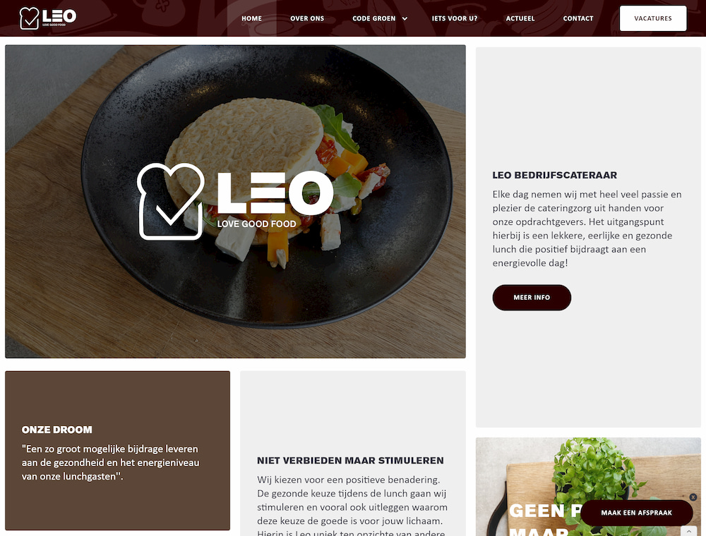 A website built by Websiteking showing a background video and the LeoLoveGoodFood logo
