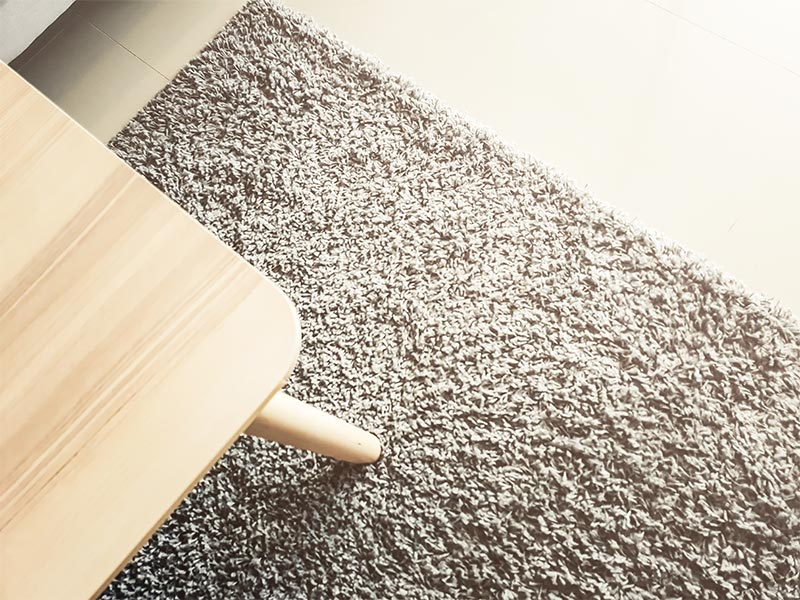 Area rug cleaning  in Essex County, MA