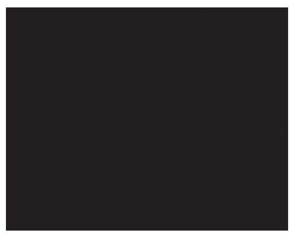 illustration of burger