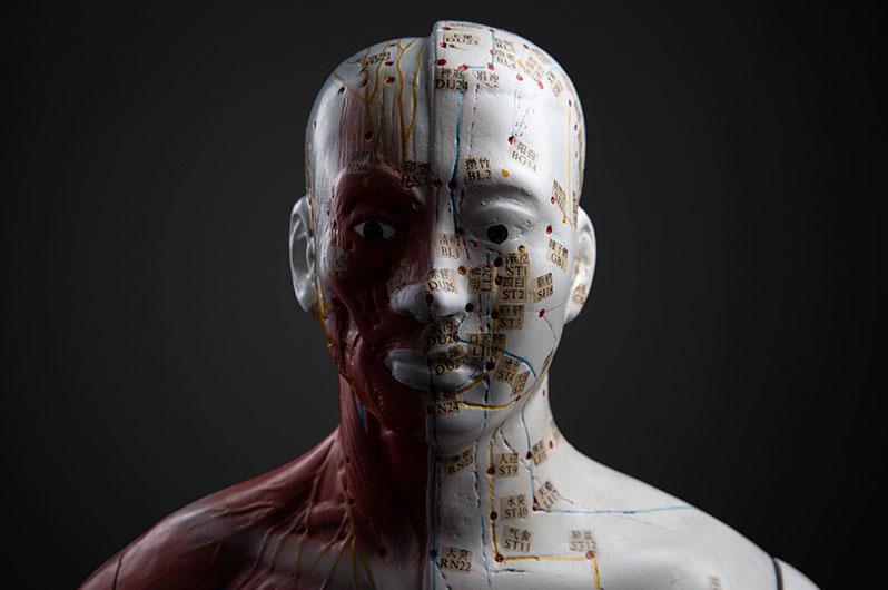 Portrait einer Akkupunktur-Puppe