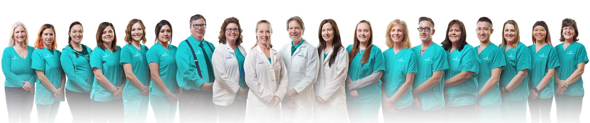 Animal Care Clinic Team - Vet in Jackson Township Ohio