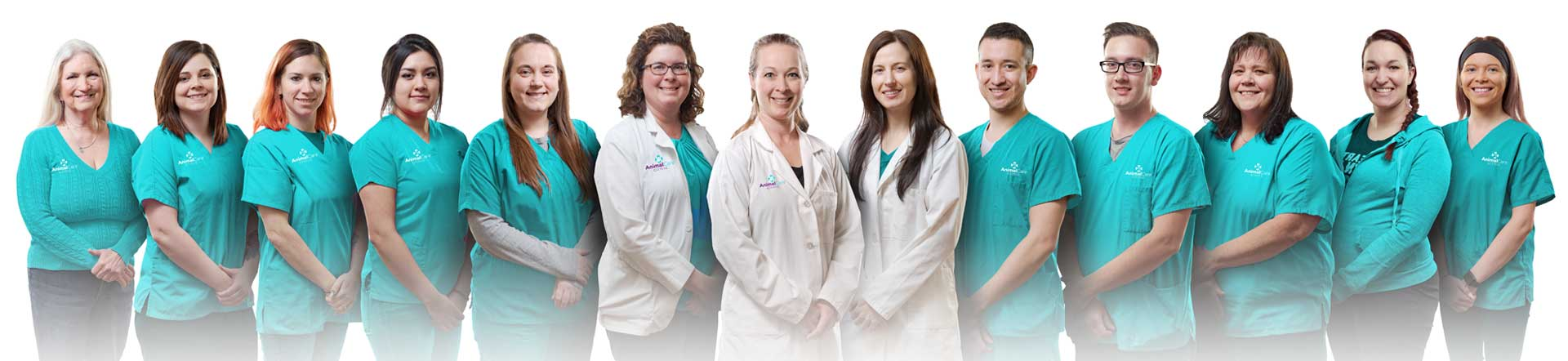 Animal Care Clinic Team - Vet in Jackson Township Ohio