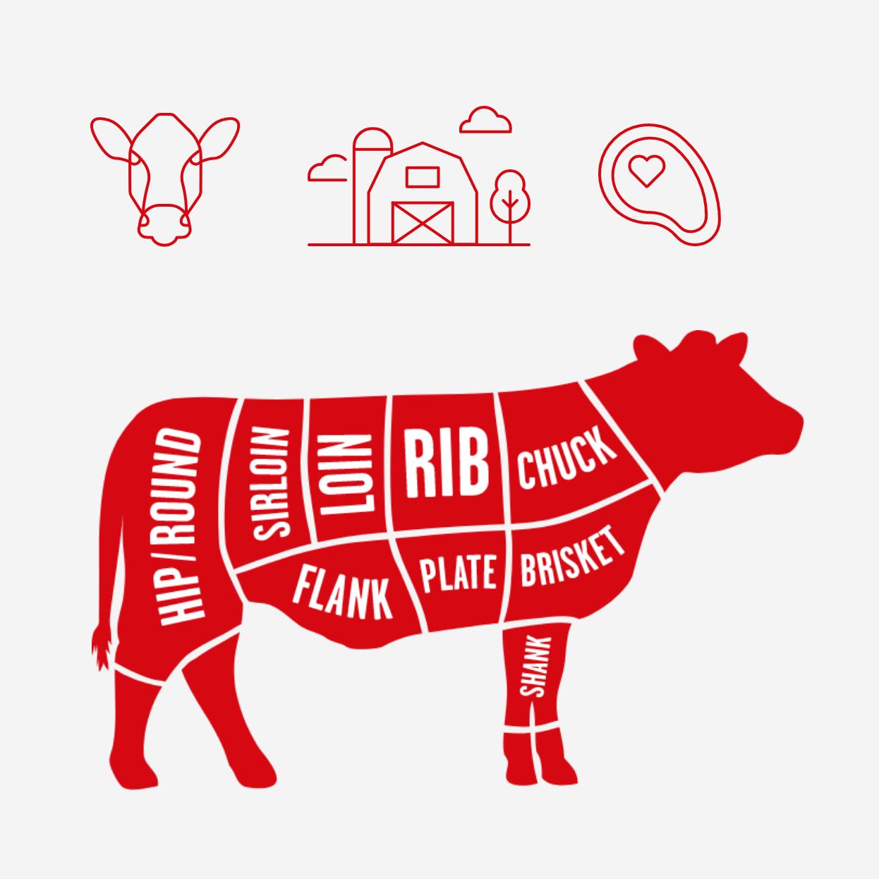 Ontario beef illustrations