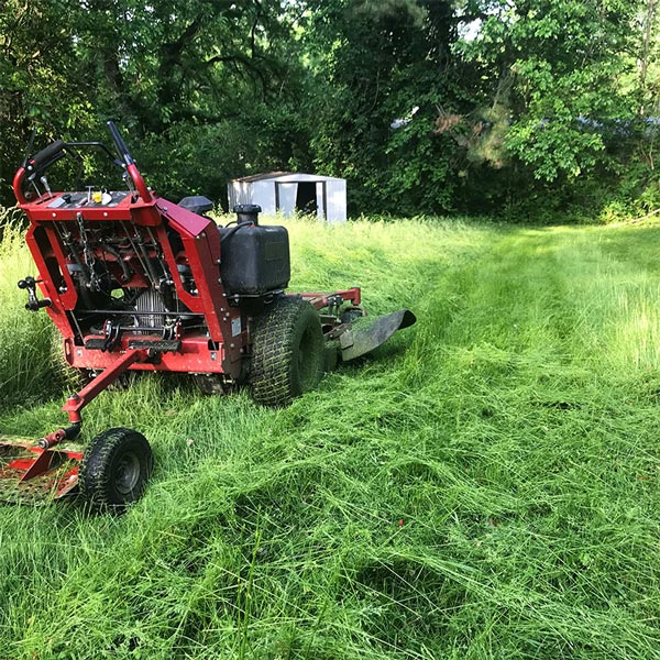 Lawn maintenance in St. Louis, MO