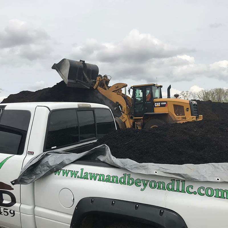 Fertilizing and weed control in St. Louis, MO