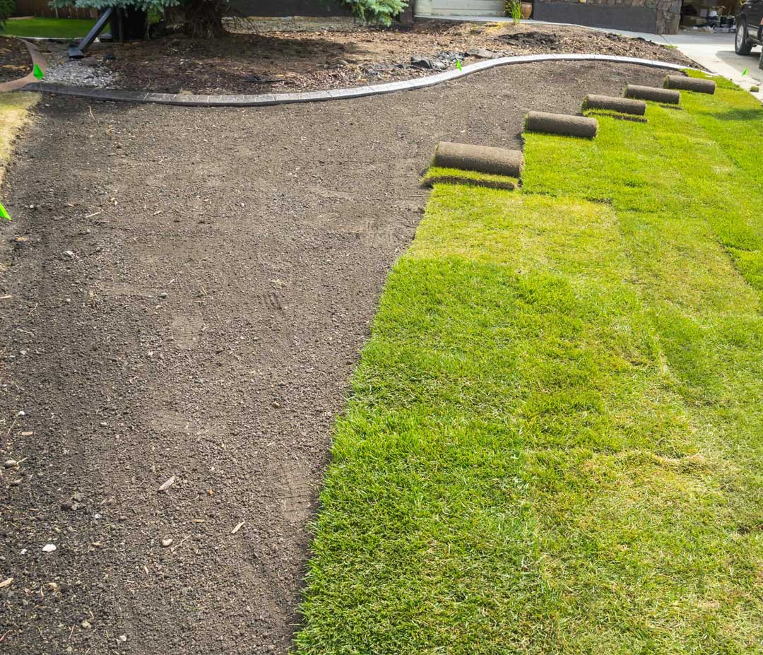 Sod installation in St. Louis, MO by Lawn and Beyond