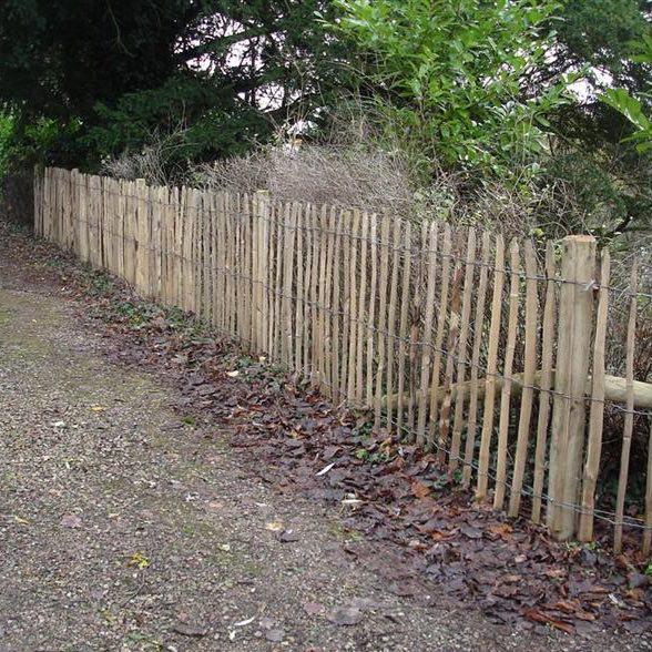 Chestnut Pale Fencing